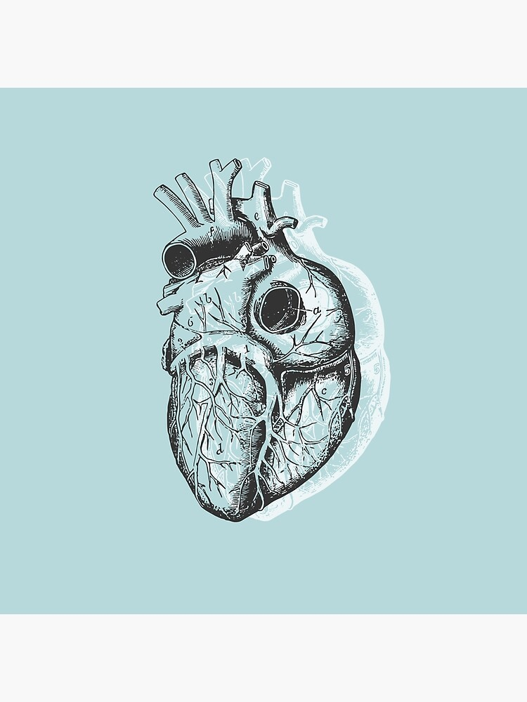 Anatomical Heart • Pastel Blue • Pastel Goth by rike-mayer
