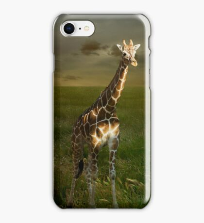 Giraffe iPhone II iPhone Case/Skin