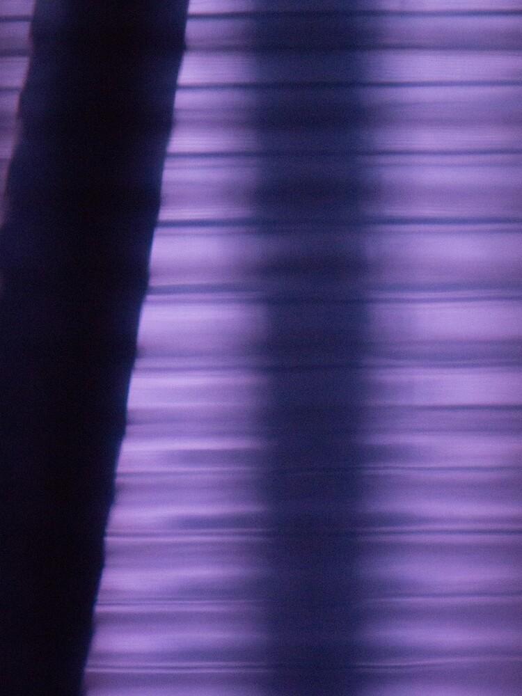 Shades of Purple by wselander