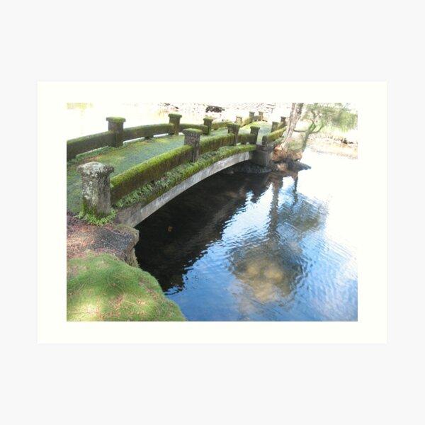 The Liliuokalani Crossing Art Print