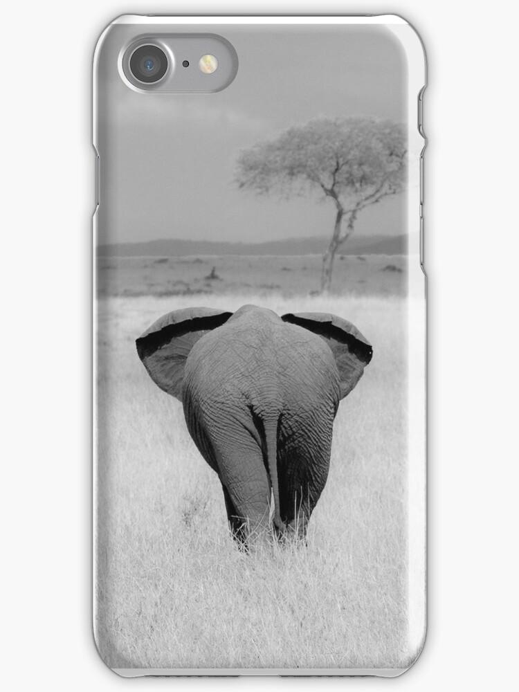 Elephant, rear view by javarman