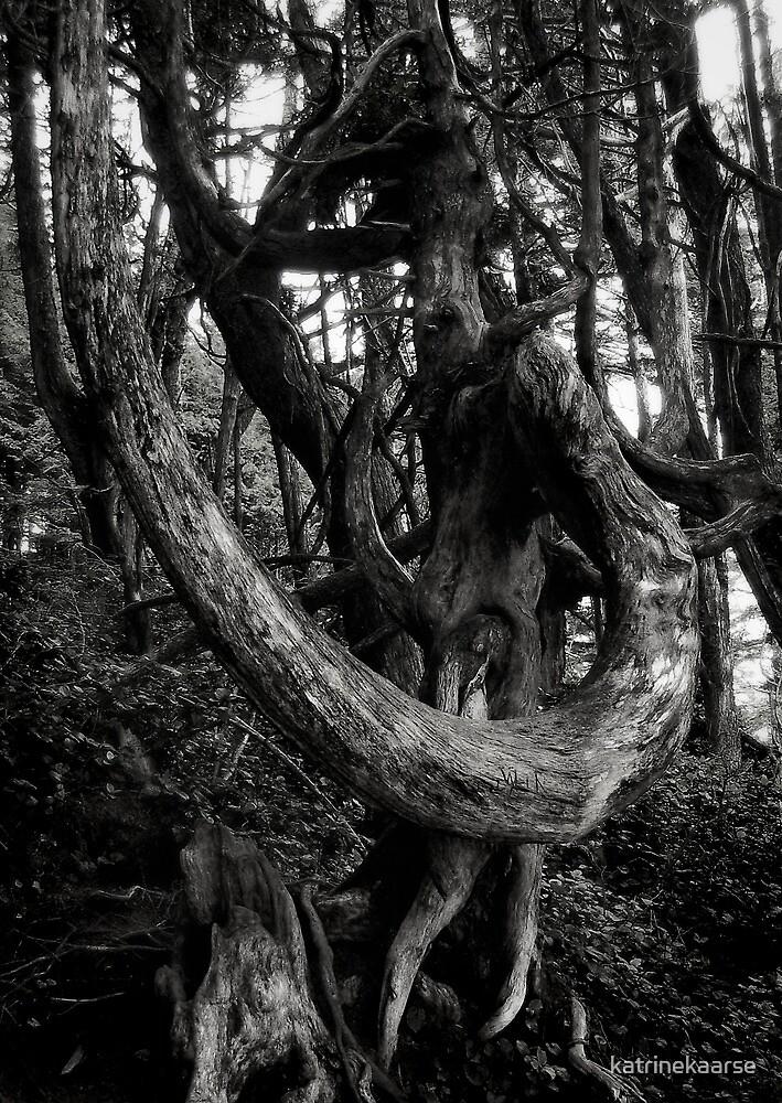 tree poetry by katrinekaarse