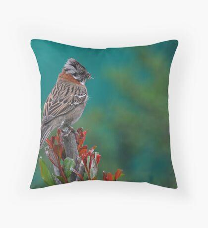 Rufous-Collared Sparrow Throw Pillow