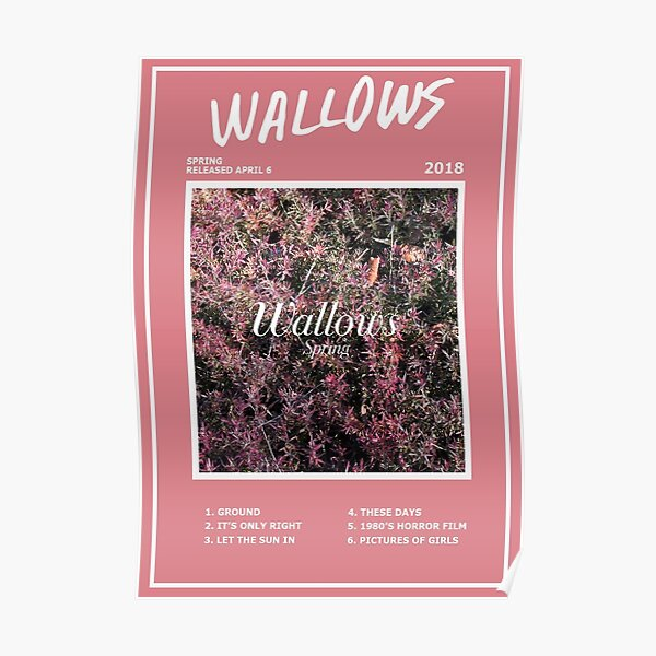 Affiche Wallows Spring EP Poster