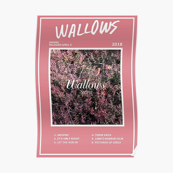 Wallows Spring EP Poster Póster