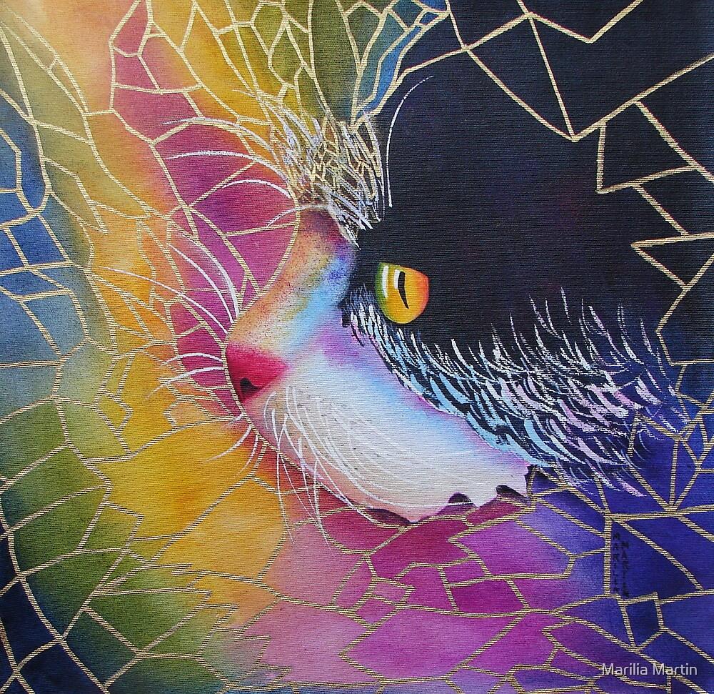 Indian cat by Marilia Martin