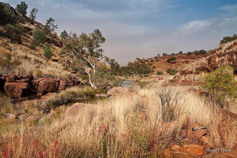 Tupul landscape, central Australia by Roger Neal
