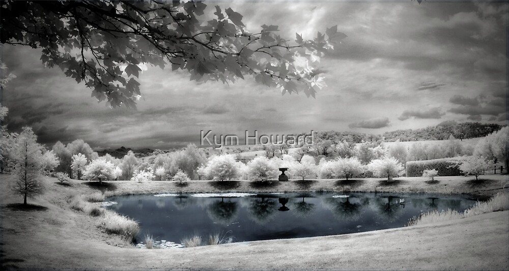 Reflections by Kym Howard