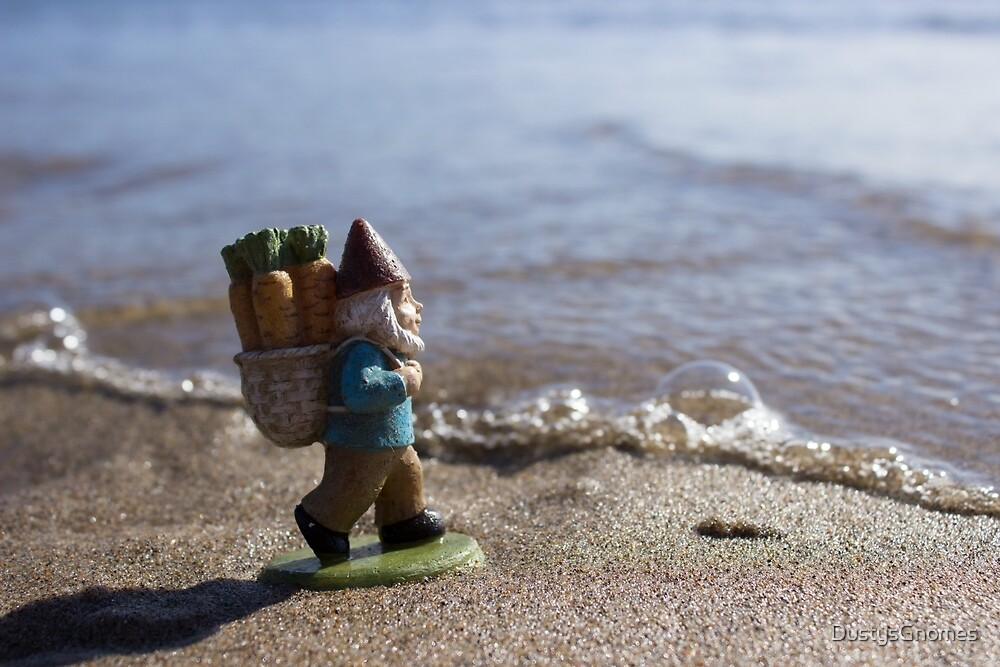 Bubble Gnome by DustysGnomes