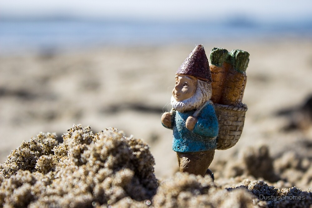Sandy Mountain Gnome I by DustysGnomes