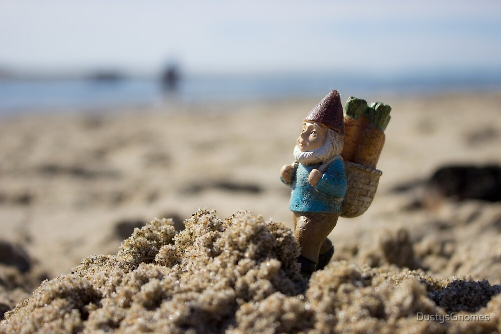 Sandy Mountain Gnome II by DustysGnomes