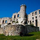 Castle Ogrodzieniec by MarekM