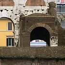 a view from the Colosseum  by johnnabrynn