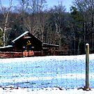 Christmas Barn in Homer by Chelei