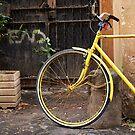 Italian Bicycle by johnnabrynn