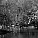Hungry Mother Bridge by Mechelep