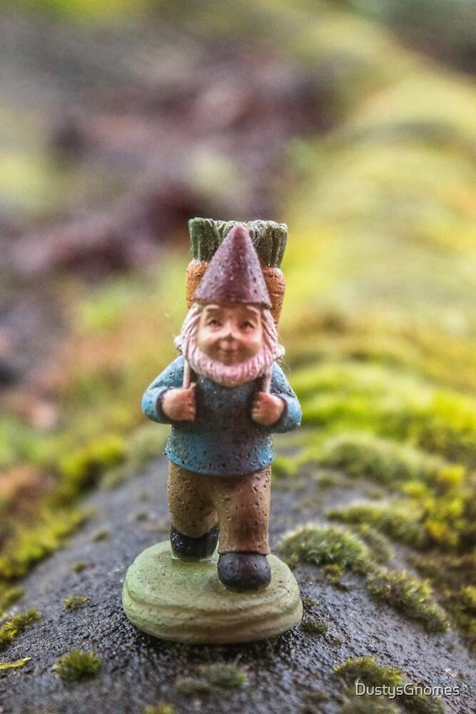 Mossy Path I by DustysGnomes