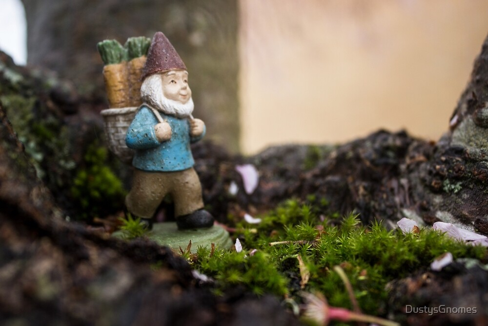 Mossy Wander Gnome by DustysGnomes