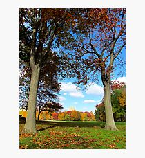 Autumn towers, Central Park - NYC Photographic Print