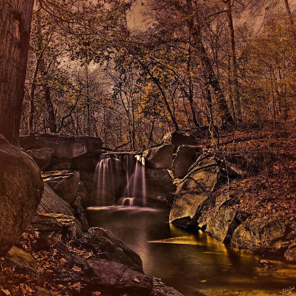 Autumn At The Waterfall In the Ravine, Central Park by Chris Lord