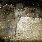 Sacred - Emma Kay by Dave Godden