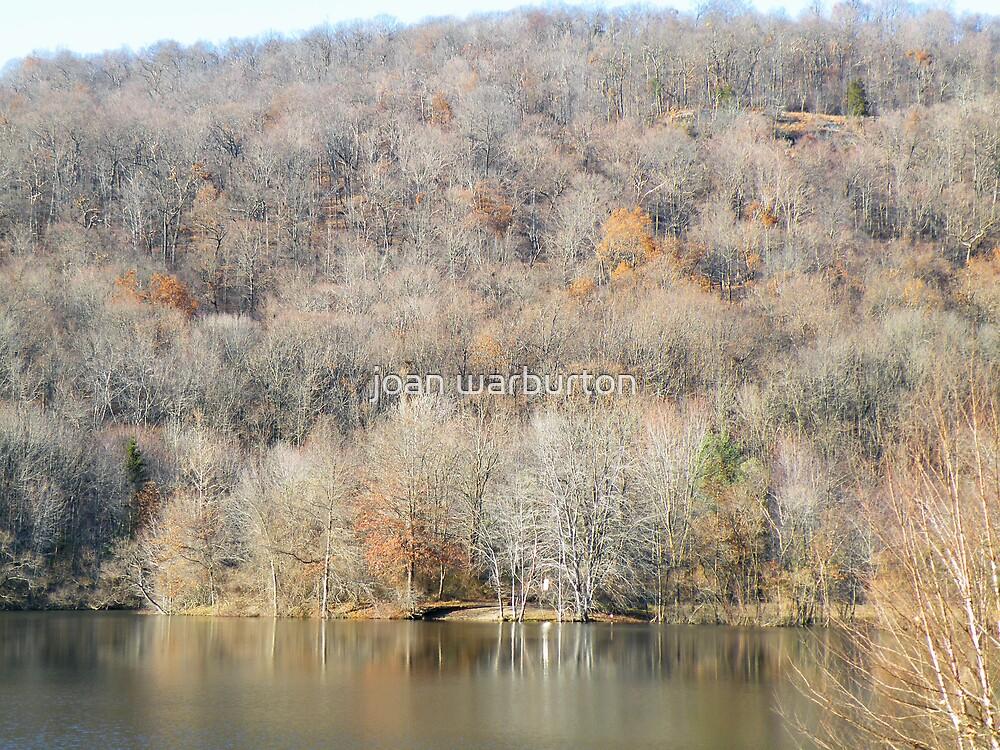November In The Ramapo Mountains by joan warburton