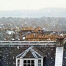 Edinburgh in the Snow by Tom Gomez