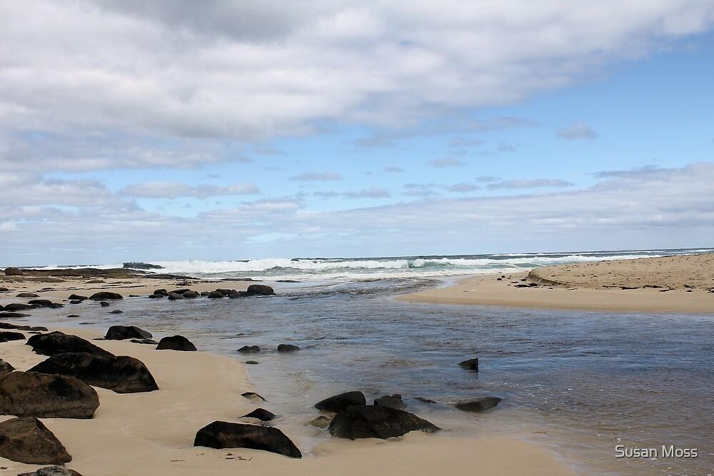 Margaret River Beach by Susan Moss