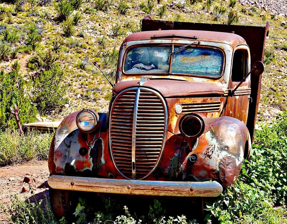 Old Rusty by Gina Dazzo