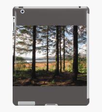 Forest glade iPad Case/Skin