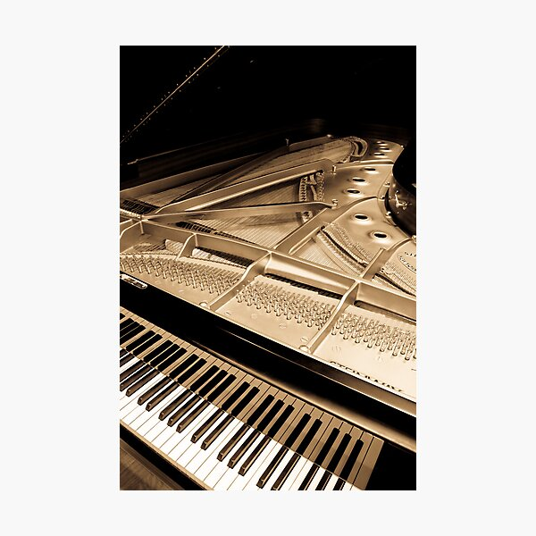 Grand Concert Piano Photographic Print