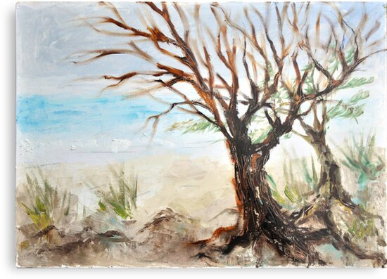 View to ocean in front of me? by Stella  Shube As