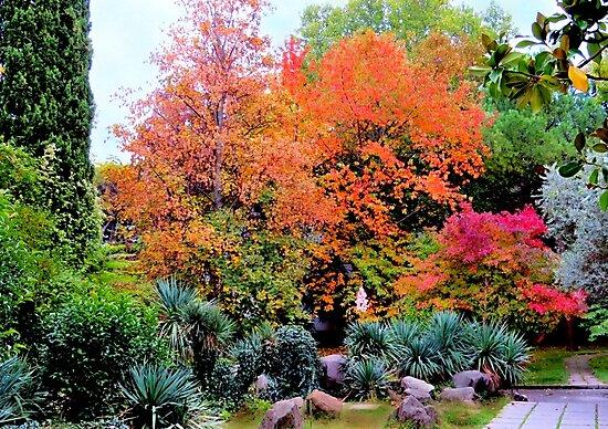Colourful autumn landscape by kindangel