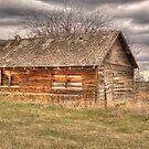 This Old Farm Building by Keri Harrish
