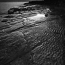 Stone Ware by John Pitman