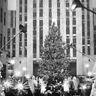 Rockefeller Center Christmas Tree by photographist