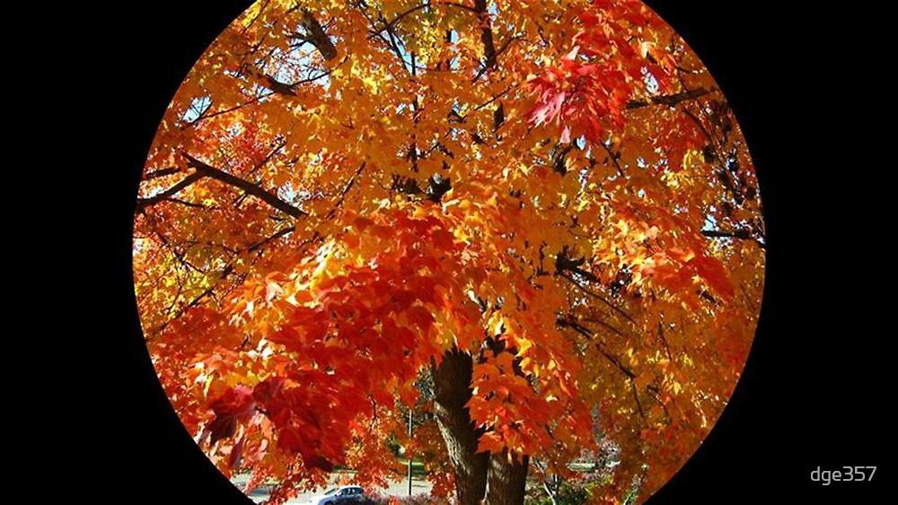 WeatherDon2.com Art 97 by dge357
