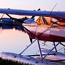 Sunlight on a Float Plane by Tim Grams