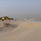 Monahans White Sand Hills Dunes by Carla Jensen