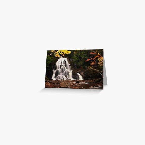 Wentworth Falls Greeting Card