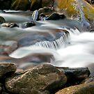 Roaring Fork Motor Nature Trail Cascade by Sam Warner