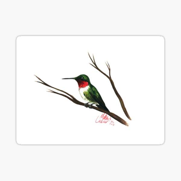 Ruby Throated Hummingbird Sticker