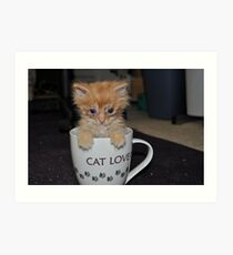 CAT LOVER! Art Print