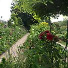 Scenes from Monet's Garden by medley