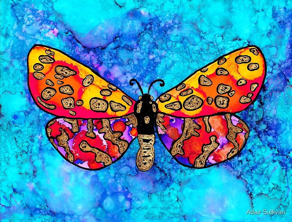 Bold Butterfly by Adair Sullivan (Ó Súilleabháin)