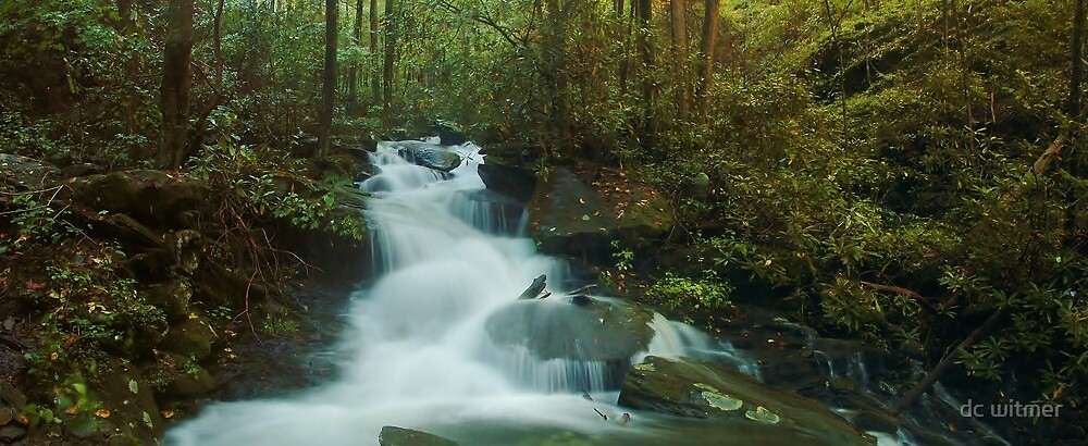 smoky mountain waterfall panoramic by dc witmer