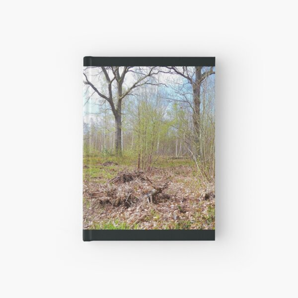 Woodland Hardcover Journal