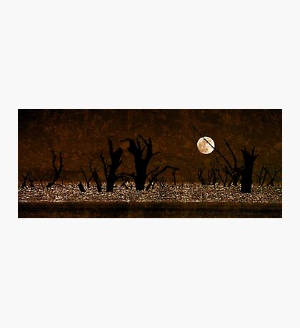 Under the Full Moon the Dead Trees Dance Photographic Print