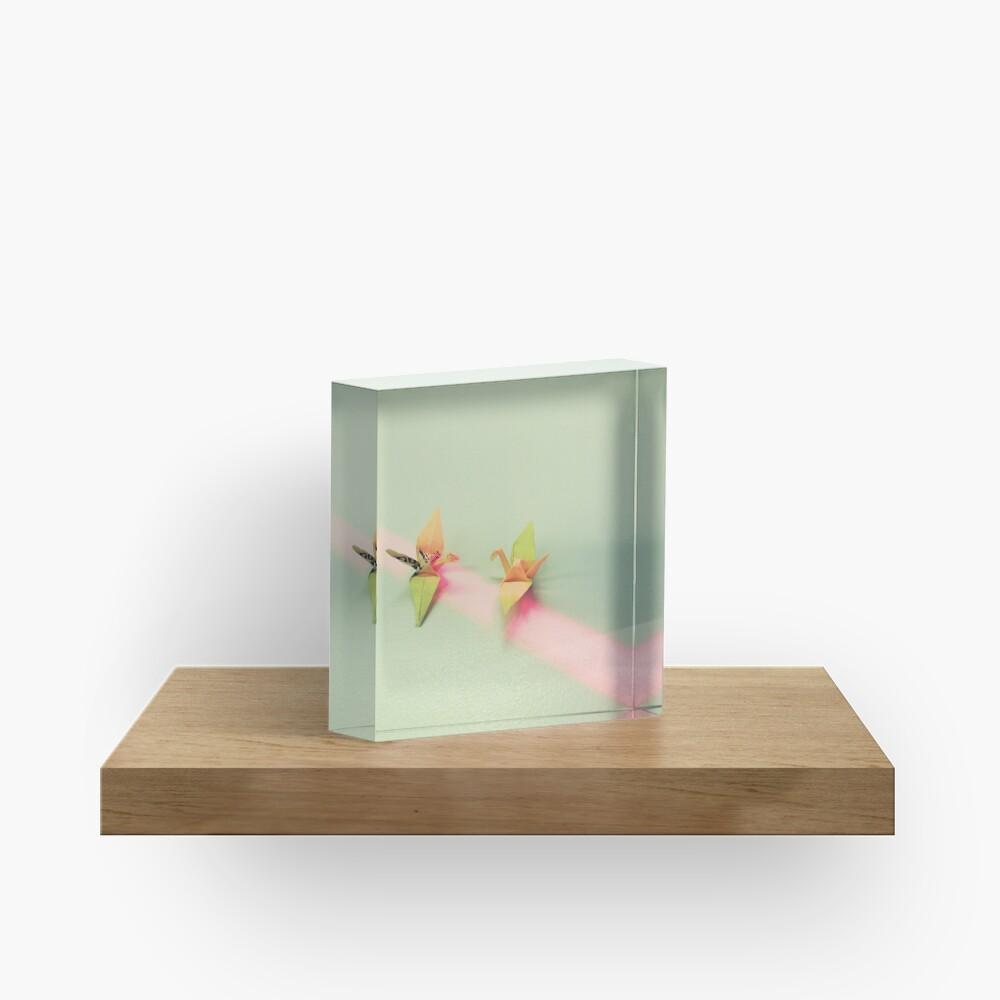 Birds Acrylic Block