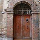 Lion Door, Firenze by Barbara Wyeth